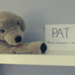 A photo of a stuffed animal Pat